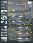 1-48-AV-8B-Harrier-Gunship-Harriers-Companion-shee