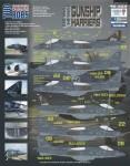1-48-AV-8B-Harrier-Gunship-Harriers-Companion-shee