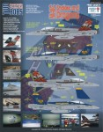 1-48-F-A-18C-Hornets-2
