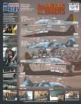 1-48-Northrop-F-5F-Double-Trouble-Bandits-6