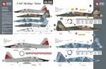 1-48-Northrop-T-38C-Heritage-Talons