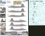 1-72-Lockheed-Martin-F-22A-Tyndalls-Raptors-3-024040-325FW-TY