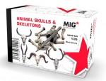 1-48-ANIMAL-SKULLS-and-SKELETONS