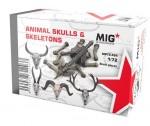 1-72-ANIMAL-SKULLS-and-SKELETONS