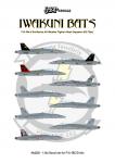 1-144-F-A-18-Iwakuni-Bats