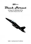 1-144-F-A-18-Black-Hornet