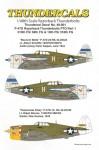 1-48-Republic-P-47D-Thunderbolt-Razorback-PTO-Part-1