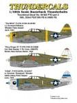 1-48-Republic-P-47D-Thunderbolt-Razorback-PTO-Part-2