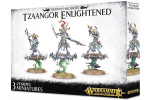 TZEENTCH-ARCANITES-TZAANGOR-ENLIGHTENED
