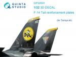 1-32-F-14-Tail-reinforcement-plates-3D-decal-TAM