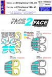 1-48-Face-2-Face-Mask-EE-Lightning-T-Mk-4-5-SWD
